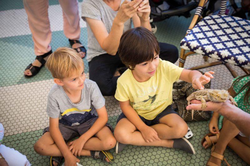 kids enjoying some reptiles during july school holidays