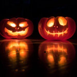 halloween pumpkins at watsons bay